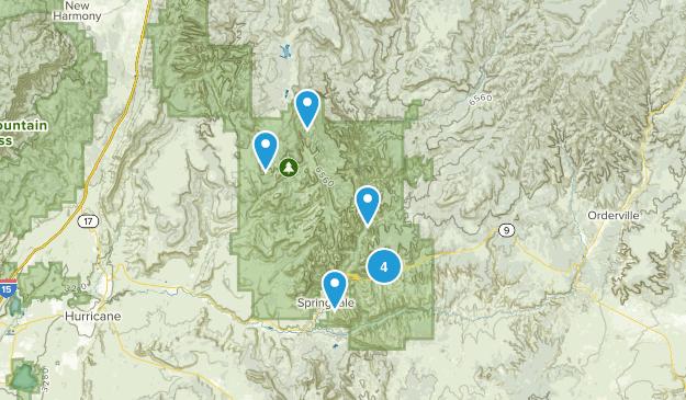 Springdale, Utah Forest Map