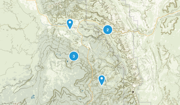 Torrey, Utah Dogs On Leash Map
