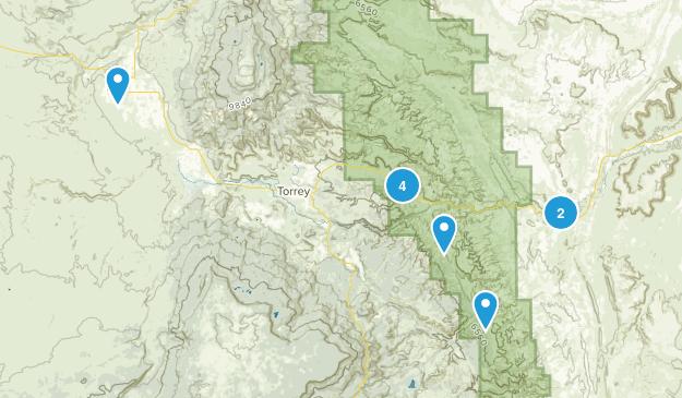 Torrey, Utah River Map