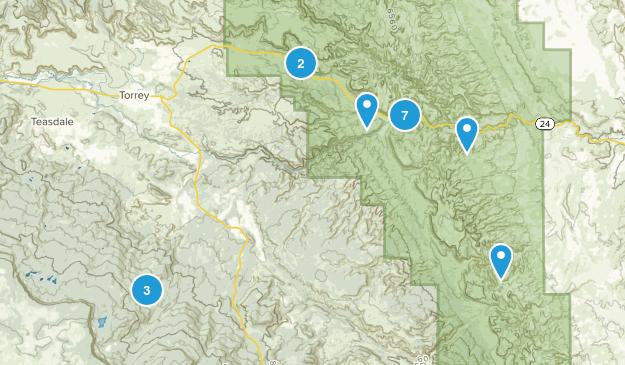 Torrey, Utah Wild Flowers Map