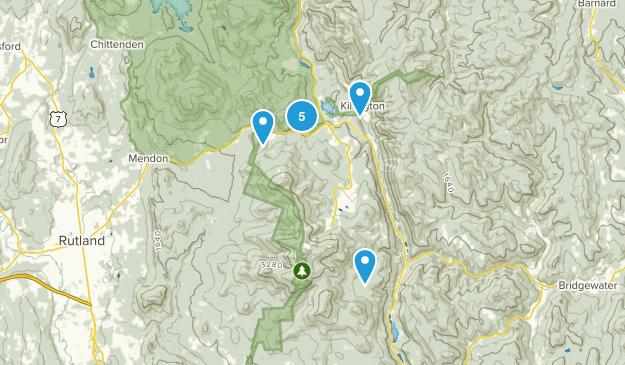 Killington, Vermont Wild Flowers Map