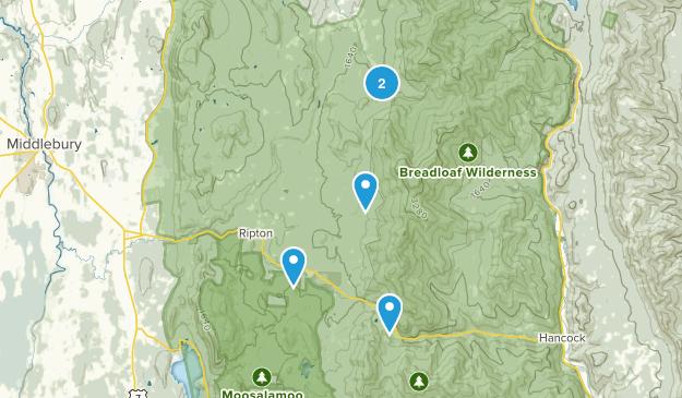 Ripton, Vermont Walking Map