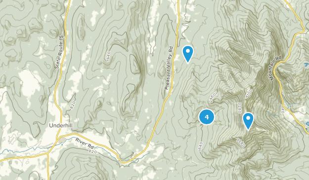 Underhill, Vermont Bird Watching Map