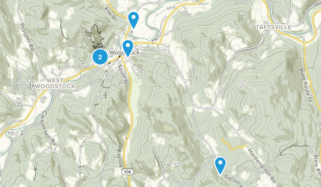 Woodstock, Vermont Wild Flowers Map