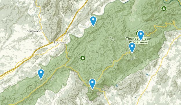 Buchanan, Virginia Forest Map