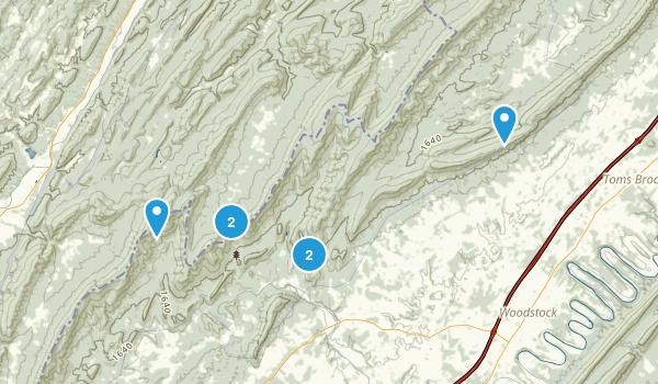 Edinburg, Virginia Forest Map