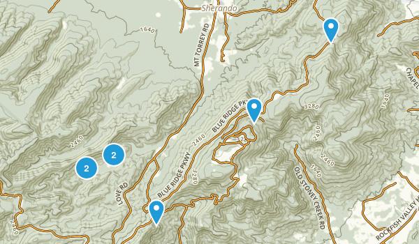 Lyndhurst, Virginia Forest Map