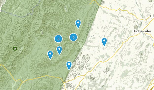 Mount Solon, Virginia Bird Watching Map