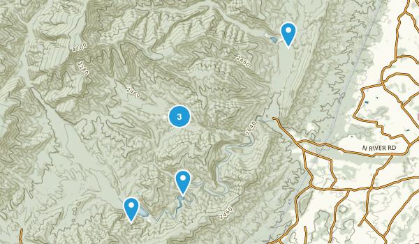 Mt Solon, Virginia Forest Map