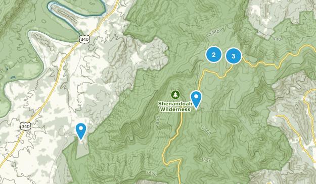 Rileyville, Virginia Forest Map