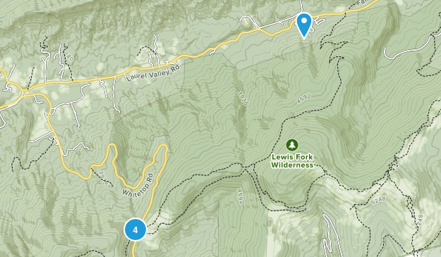 Trout Dale, Virginia Forest Map
