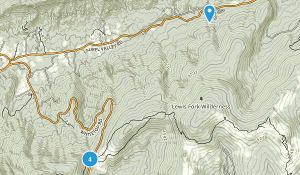 Trout Dale, Virginia Nature Trips Map