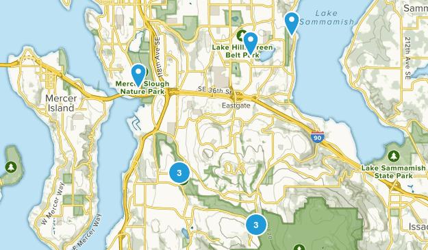 Bellevue, Washington Wild Flowers Map