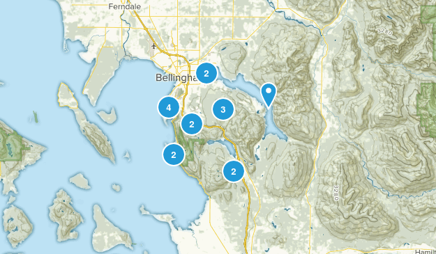 Bellingham, Washington Dogs On Leash Map