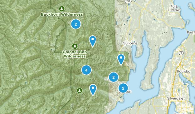 Brinnon, Washington River Map