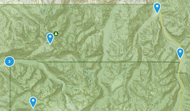 Buckley, Washington Birding Map