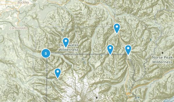 Buckley, Washington Forest Map