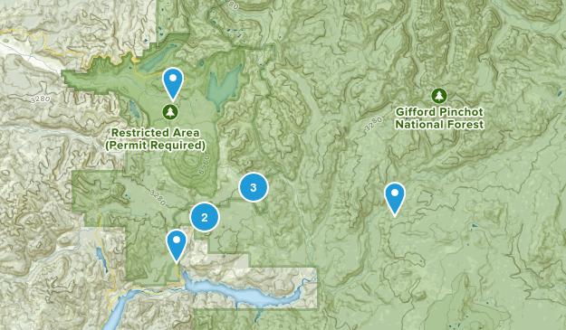 Cougar, Washington Birding Map