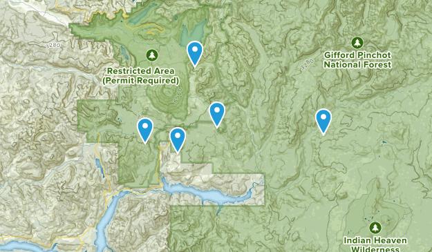 Cougar, Washington Mountain Biking Map