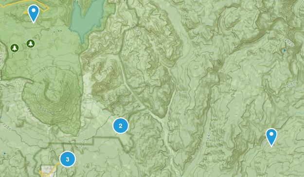 Cougar, Washington Wildlife Map