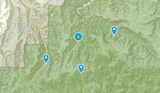 Dayton, Washington Forest Map