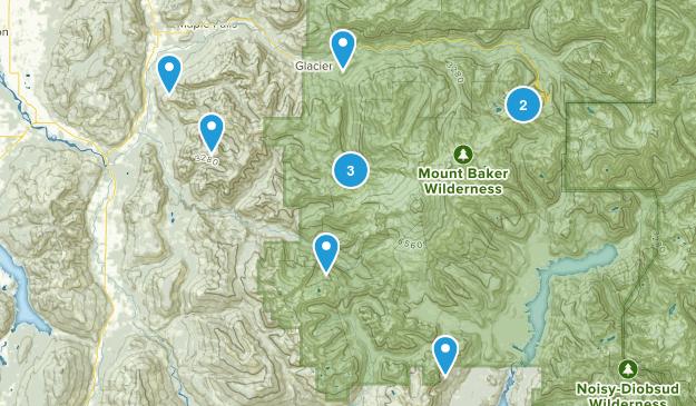 Deming, Washington Wild Flowers Map
