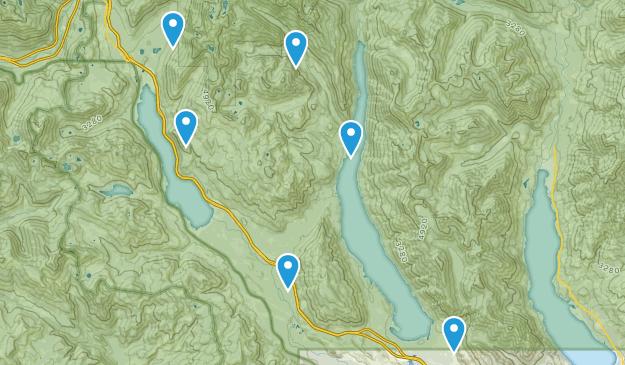 Easton, Washington Forest Map