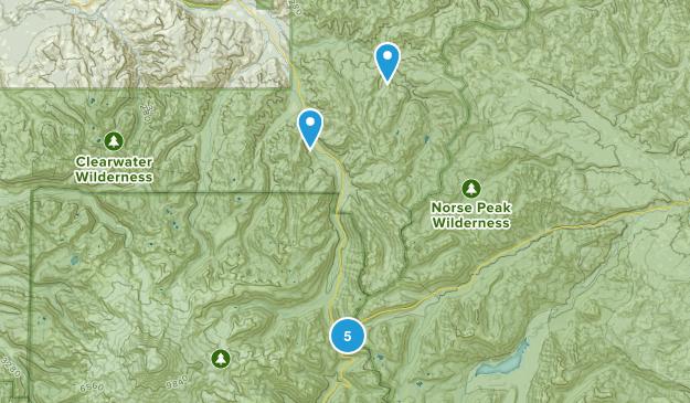 Enumclaw, Washington No Dogs Map