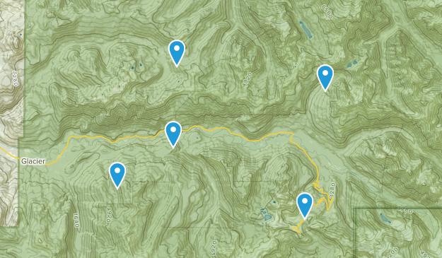 Glacier, Washington Wildlife Map