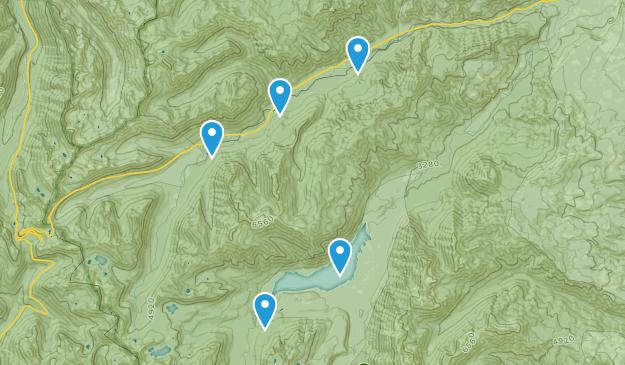 Goose Prairie, Washington Birding Map