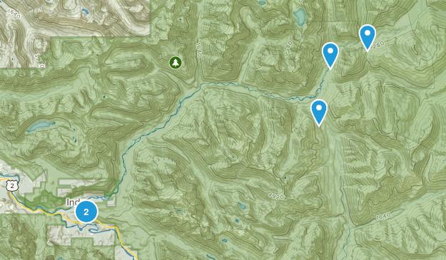 Index, Washington Birding Map
