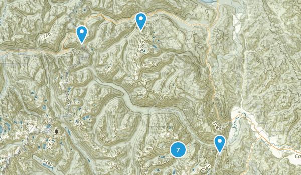 Leavenworth, Washington No Dogs Map