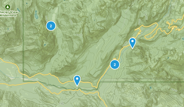 Longmire, Washington Wildlife Map