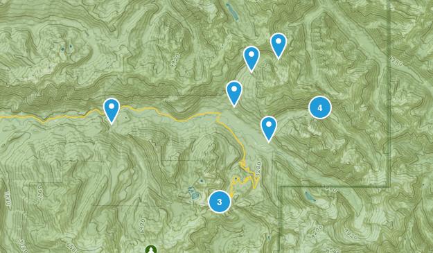 Maple Falls, Washington Birding Map