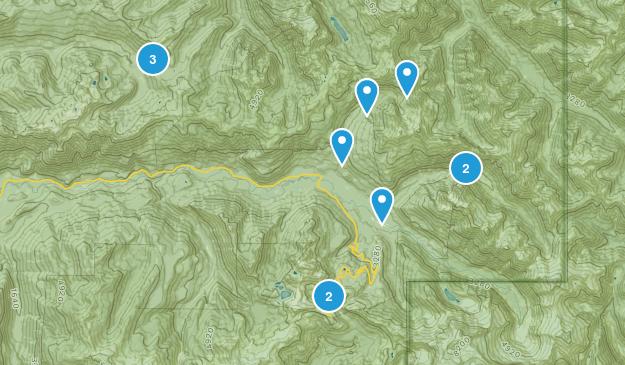 Maple Falls, Washington Dog Friendly Map