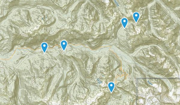 Maple Falls, Washington Trail Running Map