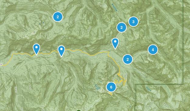 Maple Falls, Washington Views Map