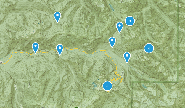 Maple Falls, Washington Walking Map