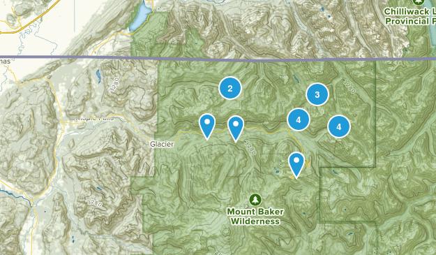 Maple Falls, Washington Wildlife Map