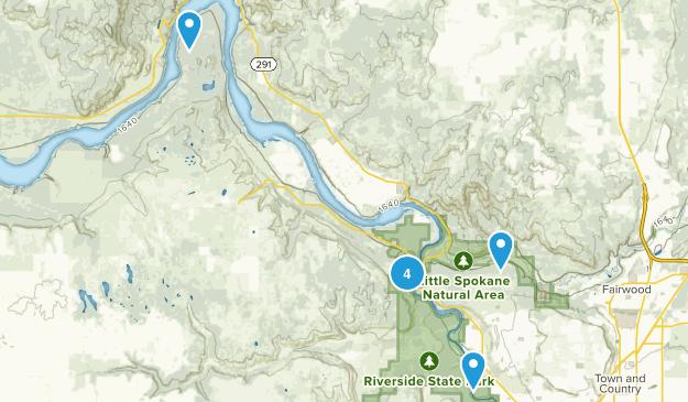 Nine Mile Falls, Washington Forest Map