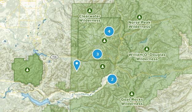 Packwood, Washington Bird Watching Map