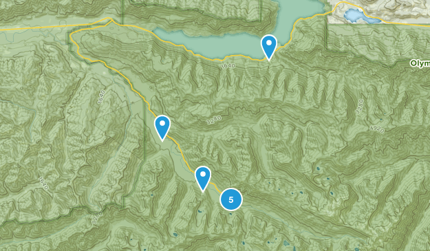 Piedmont, Washington Forest Map