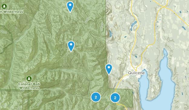 Quilcene, Washington Dogs On Leash Map