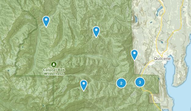 Quilcene, Washington Forest Map
