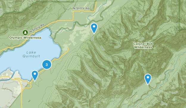 Quinault, Washington Forest Map