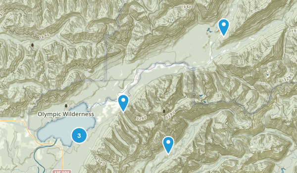 Quinault, Washington Nature Trips Map