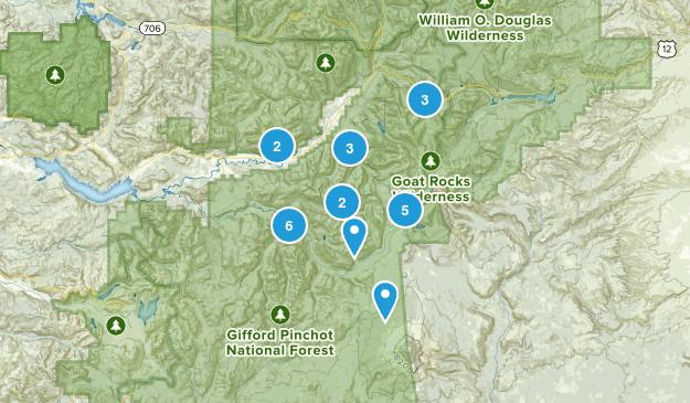 Randle, Washington Dogs On Leash Map