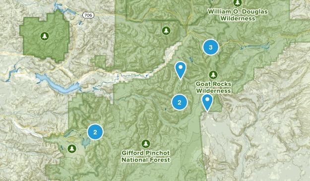 Randle, Washington Lake Map