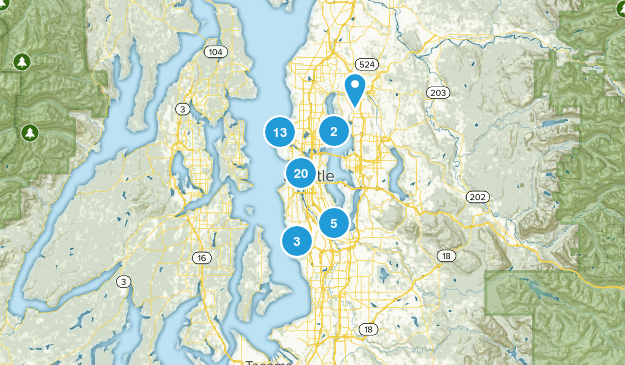 Seattle, Washington Walking Map