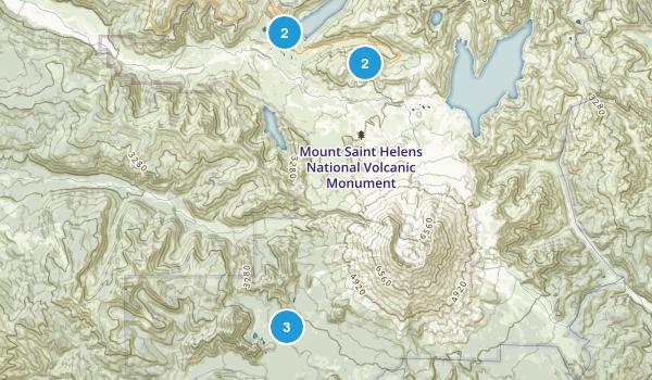 Toutle, Washington Forest Map